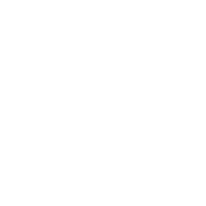 EINFLUSS - Logo mit Schriftzug